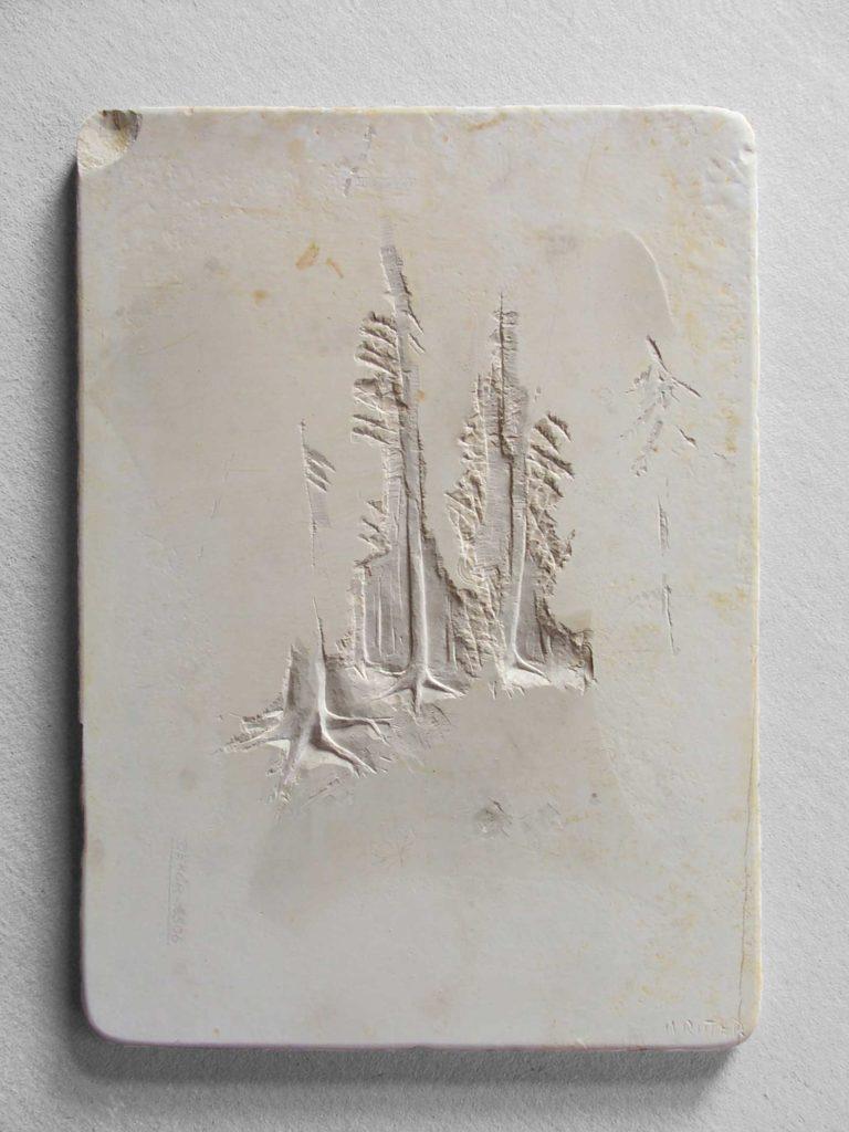Waldstück 2 Juramarmor, 38 x 27 x 1,7 cm
